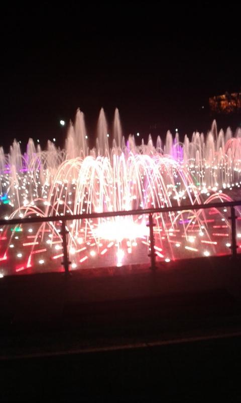 Ночной фонтан Царицыно