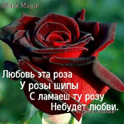 0e38cea1.jpg