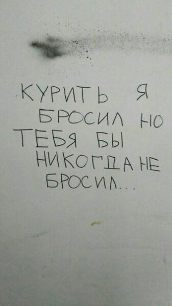 3be2cda5.jpg