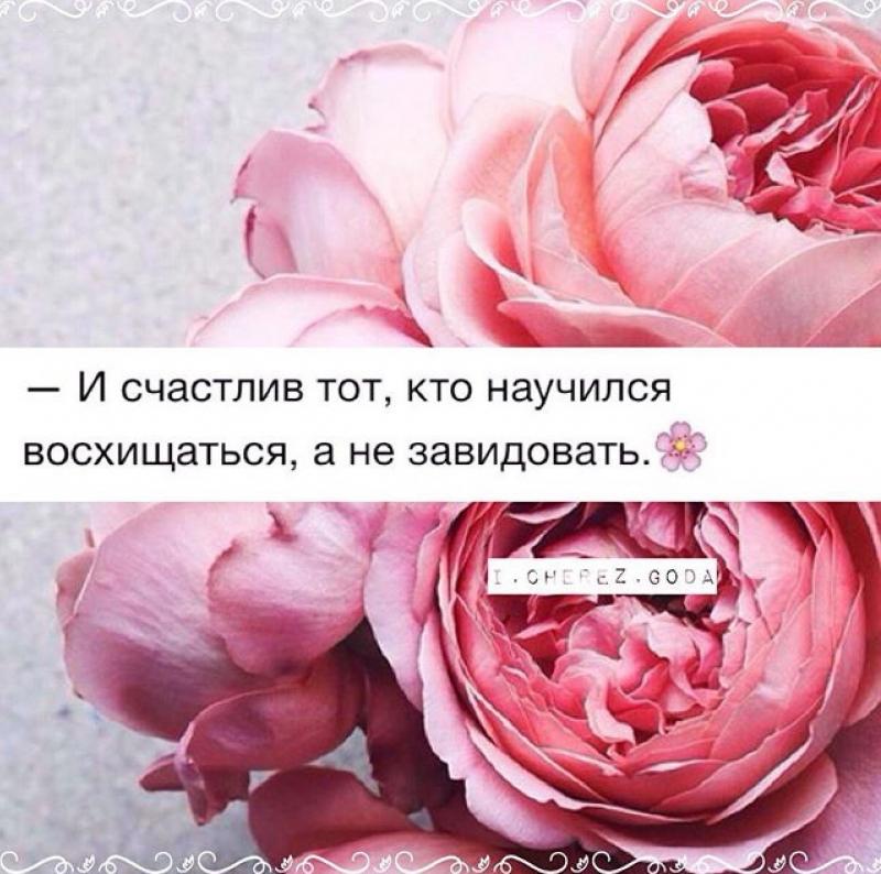 b57908fe.jpg