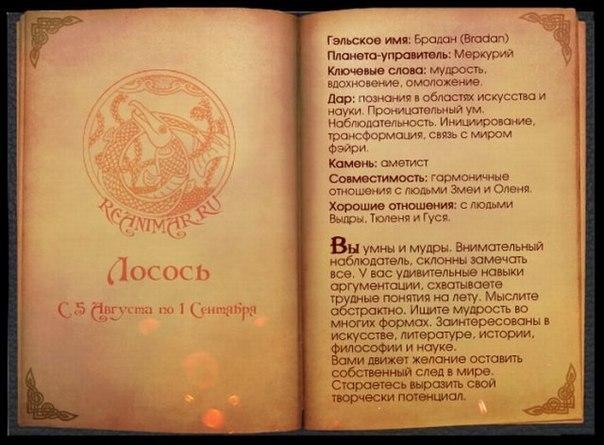 КЕЛЬТСКИЙ ГОРОСКОП