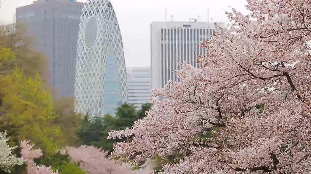 Япония - страна сакуры и трудоголиков. Мир наизнанку - 1 серия, 9 сезон