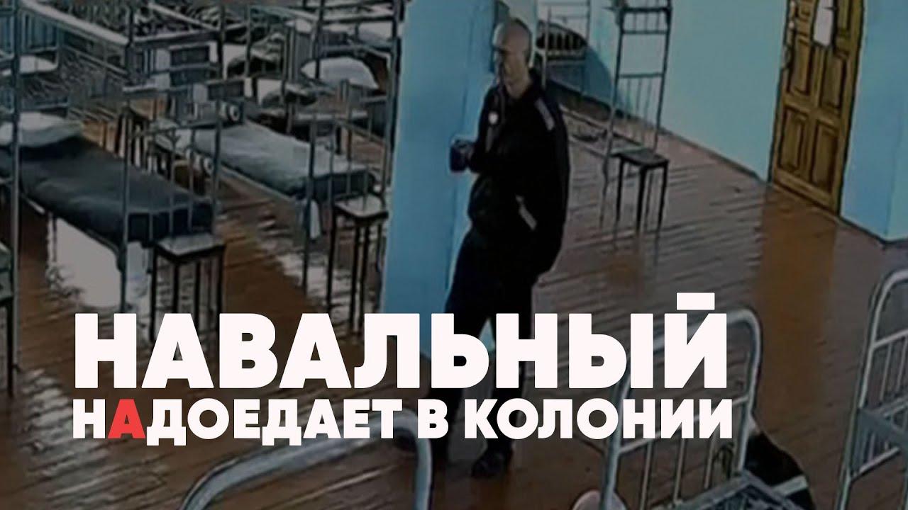 Навальный надоедает в колонии | «Пытки» конфетой и курицей | Киев провоцирует войну | Полный контакт