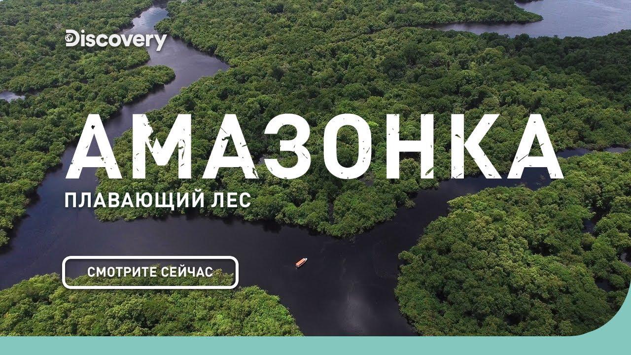 Амазонка: плавающий лес   Неизведанные острова   Discovery Channel