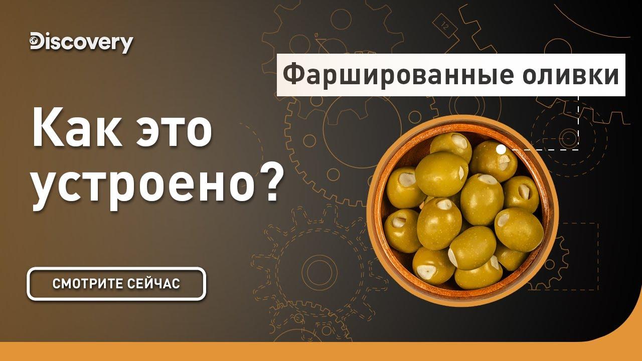 Фаршированные оливки | Как это устроено | Discovery